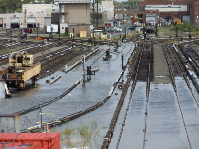 Coney Island Yard Flooding